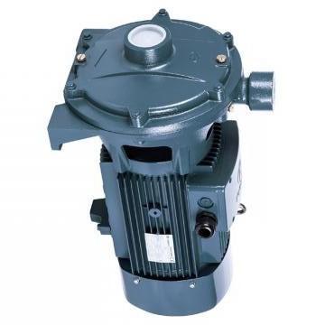 Vickers PV063R1K1T1NULC4242 PV 196 pompe à piston