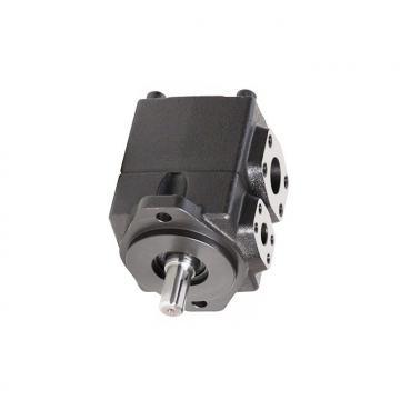 YUKEN PV2R4-184-F-LAB-4222 PV2R Single pompe à palettes