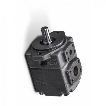 YUKEN PV2R4-153-L-RAB-4222 PV2R Single pompe à palettes