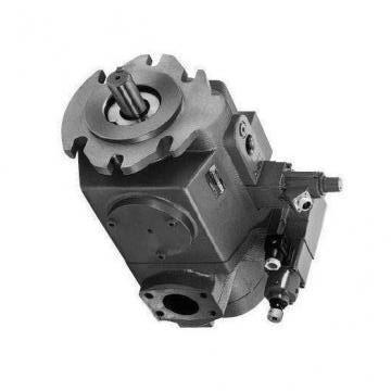 Vickers PV063R1K1T1NMLZ+PVAC2MCMNSYW20 PV 196 pompe à piston