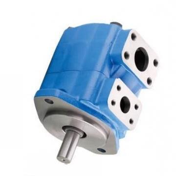 Vickers PV063R1K1T1NFRZ+PVAC1ECMNSYW20 PV 196 pompe à piston