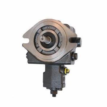 Vickers PV063R9K1K3NSCCK0201+PV046R1L1 PV 196 pompe à piston